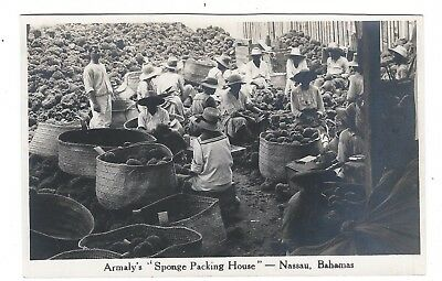 Armaly's Sponge Packing House, Nassau, Bahamas Old Real Photo Postcard