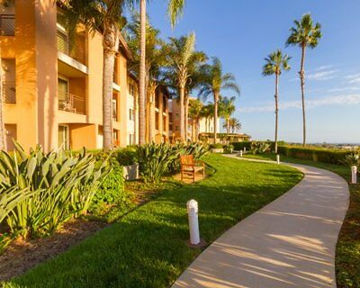 Grand Pacific Palisades 1 Bedroom Even Year Timeshare For Sale
