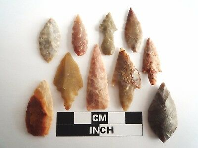 Neolithic Arrowheads x 10, High Quality Selection of Styles - 4000BC - (1092)