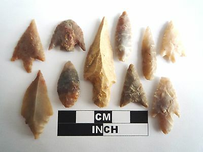 Neolithic Arrowheads x 10, High Quality Selection of Styles - 4000BC - (1075)
