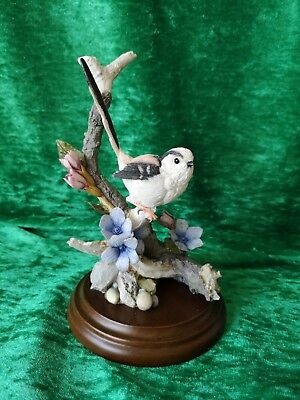 Country Artists Long-tailed Tit