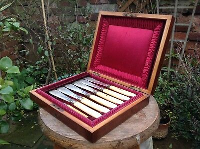 Antique Vintage Cutlery Set Mahogany Wooden Box Complete Lovely Interior.