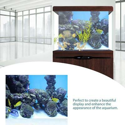 Decorations Sticker Poster Fish Tank Underwater Coral Aquarium Background Wall