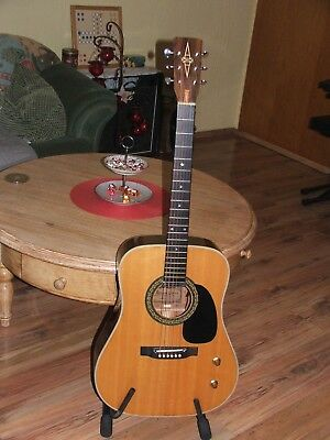 Vintage Alvarez model 5046 made in Japan-Tip-Top