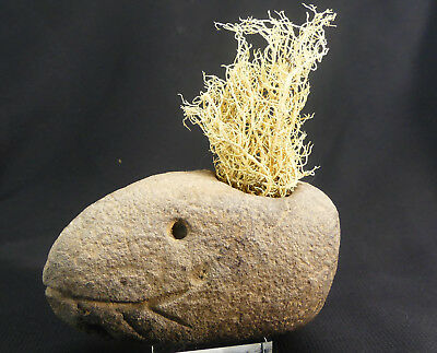 X-RARE Native American Shaman's Stone Eel Effigy Pipe w/Petroglyph! Fort Ancient