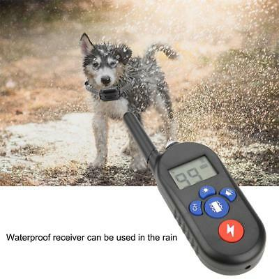 Control Dog Training Collar Non Bark Waterproof Rechargeable Electric Remote