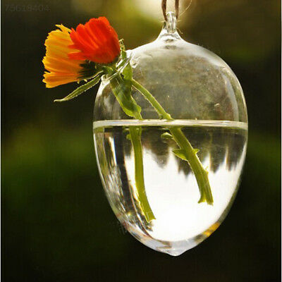 3AA9 Clear Egg Shape Glass Hanging Vase Bottle Hydroponic Pot Wedding Decor