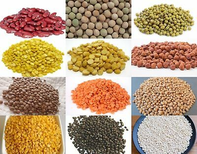 Pulses | Beans | Lentils for Indian cooking | Freshly packed | Whole Sale India