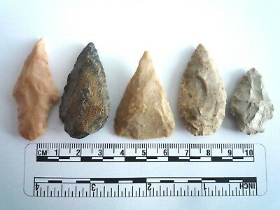 5 x Native American Arrowheads found in Texas, dating from approx 1000BC  (2223)