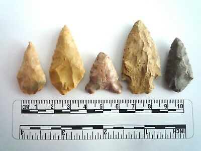 5 x Native American Arrowheads found in Texas, dating from approx 1000BC  (2247)