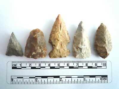 5 x Native American Arrowheads found in Texas, dating from approx 1000BC  (2239)
