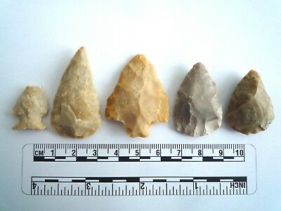 5 x Native American Arrowheads found in Texas, dating from approx 1000BC  (2214)