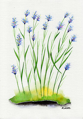 Plants, herbs, flowers, blue, Watercolor Original Painting Art, Quick sketch