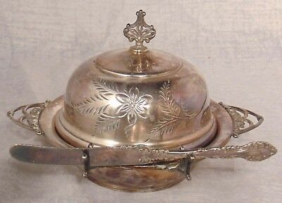 Vintage Van Bergh Silver Co Quadruple Plate Silverplate Round Butter Dish #324