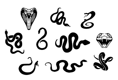 Snake Decal Vinyl Painting Stencil For Shoes & Small Objects