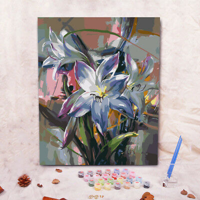 DIY Wall Oil Painting by Numbers Canvas Set Room Decor Animal Flower Waterfall