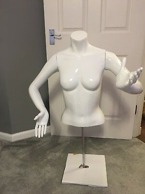 Brand New High Gloss Female Mannequin Adjustable Arms & Hands & Stand Inc