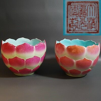 Antique Chinese porcelain lotus flower pot Jardiniere pair, Daoguan Marked, Qing