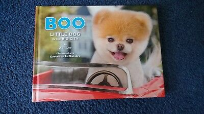 Boo Little Dog in the Big City by J. H. Lee 9781452109718 (Hardback, 2012)