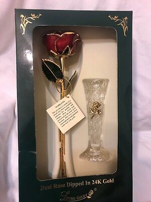 Sinvitron Real Rose Flower with Long stem Dipped In 24k Gold with Stand New