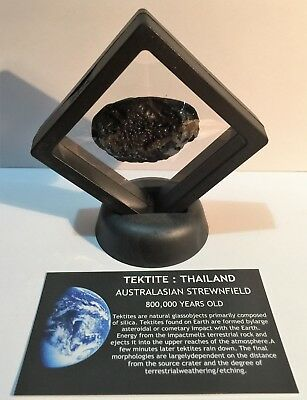 """RARE"" 23.9 Gram TEKTITE Museum Quality with stand and label, asteroid, Comet"