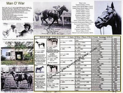 Race Horse Man O' War picture pedigree photo chart one of the greatest.