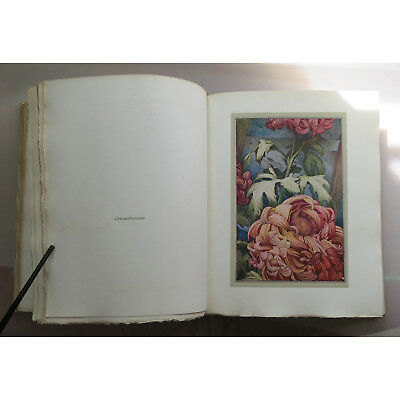 Detmold Hours Gladness Lithographs Flowers Watercolors First Edition 1912