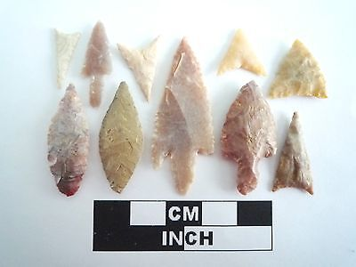 Neolithic Arrowheads x 10, High Quality Selection of Styles - 4000BC - (0394)