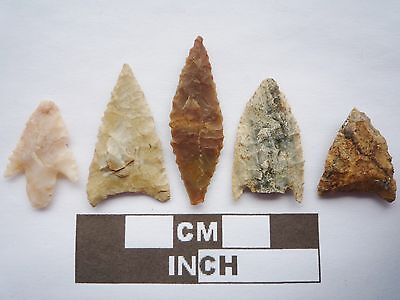 Neolithic Arrowheads x5, High Quality Selection of Styles - 4000BC - (Q080)