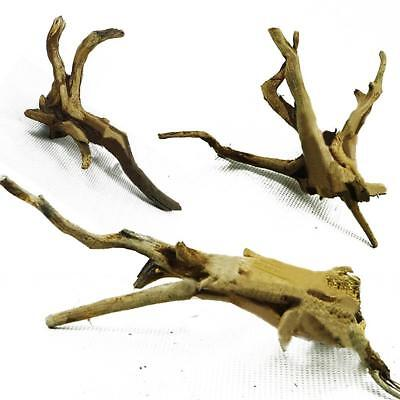 New Trunk Fish Tank Driftwood Natural Wood Tree Aquarium Plants Decoration
