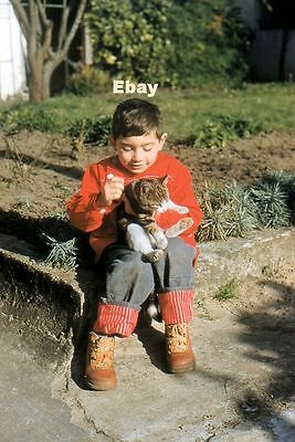 #B1 Amateur 35mm Slide-Photo- Little Boy and Cat- 1958
