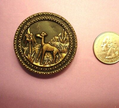 Rare Extra Large Antique Animal Giraffe Brass  Picture Button:-Foliage
