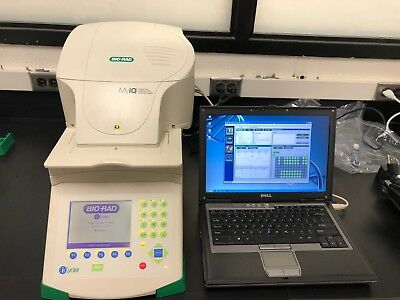 Bio-Rad MYIQ Real-time PCR system- Filter sets for FAM, TEX, VIC, ROX and NED