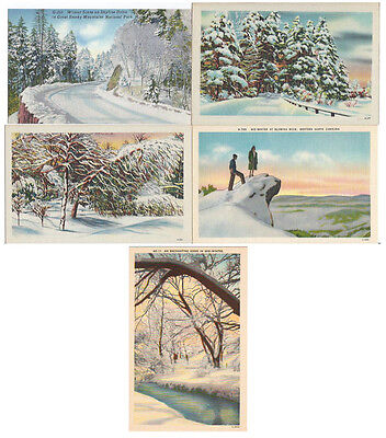 5 Unused Unposted Linen Winter Landscapes of the South Postcards