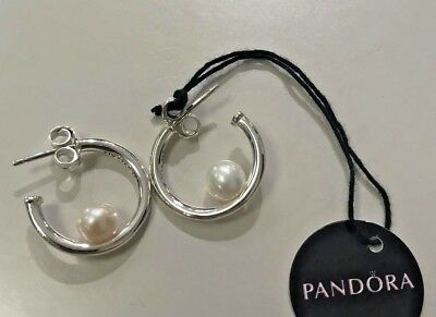 0f45d3f274d9d AUTHENTIC PANDORA CONTEMPORARY Pearl Hoop Earrings, 297528P #1607 ...