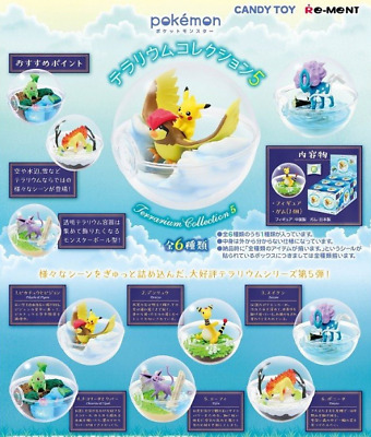 Pokemon Terrarium Collection 5 All 6 species from Japan Re-Ment 6sets SALE