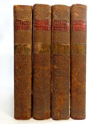 Rare Late 18Th C Antique Buffon's Nat History (1775) Vols 1,3,4,6 Leather Bound