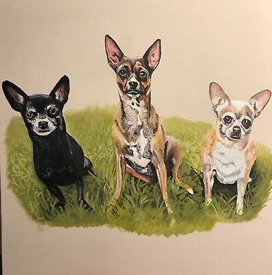 16 x 20 Personalized Custom Hand painted Pet Portrait of your pet