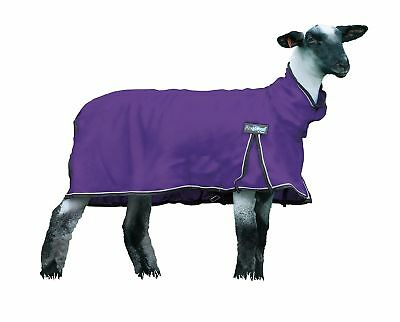White Large Weaver Procool Mesh Sheep Blanket with UV Protection
