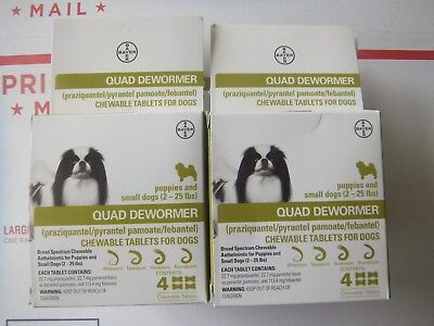 Bayer Expert Care Quad Dewormer  Chewables Small Dog 2-25lbs  2 Boxes