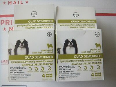 Bayer Expert Care Quad Dewormer  Chewables Small Dog 2-25lbs  1 Box