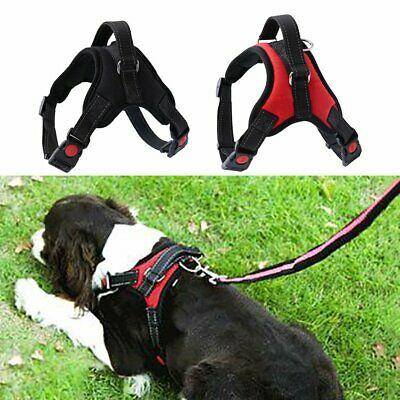 Pet Puppy Large Dog Vest Harness Nylon Hand Strap No Pull Adjustable S/M/L/XL BK