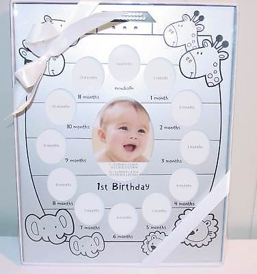 Baby First Year Picture Frame for 13 Photos NEW *Shower Gift* Silvertone Animals