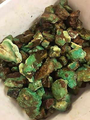 1lb Wholesale Bulk Natural Chrysoprase Gem Green Rough Stone Lot