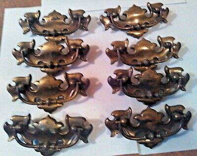 Vintage Chippendale Bat Wing Drop Bail Canadian Brass Drawer Pulls CP 1825  (1)