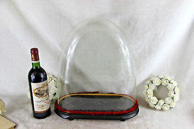 Victorian Antique Oval Hand Blown Glass Dome Globe Mantle Clock taxidermy