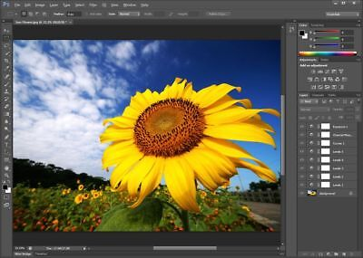 Adobe Photoshop Cs6 Extended (Lifetime Subscription)