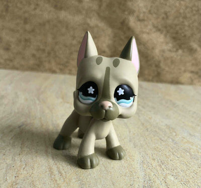 Littlest Pet Shop Custom OOAK LPS Dane Blue Eyes Hand Painted Figure
