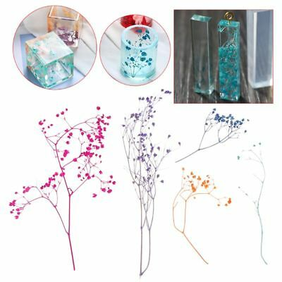 1Box Filling Dry Flower DIY Handmade Flower Epoxy Resin Filler Craft UV Material