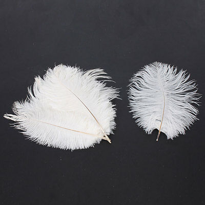 New 10Pcs Natural 8-10inch/20-25cm Ostrich Feathers High Quality US White